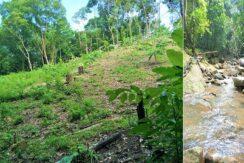 A vendre terrain avec cascade à Maenam Koh Samui 02