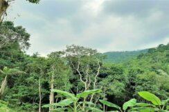 A vendre terrain avec cascade à Maenam Koh Samui 06
