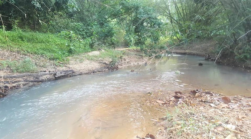 A vendre terrain avec rivière Soi 2 à Maenam Koh Samui – 6400 m² – plat
