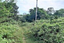 A vendre terrain avec rivière à Maenam Koh Samui 012
