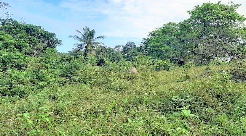 A vendre terrain avec rivière à Maenam Koh Samui 014