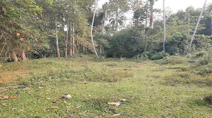 A vendre terrain avec rivière à Maenam Koh Samui 07