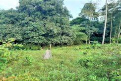A vendre terrain avec rivière à Maenam Koh Samui 08