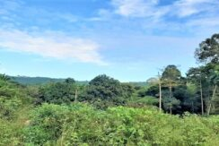 A vendre terrain avec rivière à Maenam Koh Samui 09
