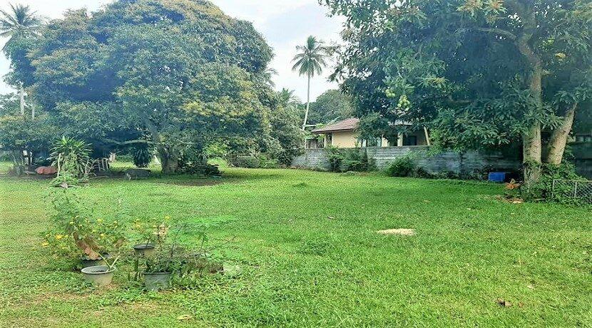 A vendre terrain plat Ban Tai Koh Samui 03