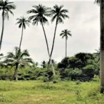 Terrain plat Maenam à vendre