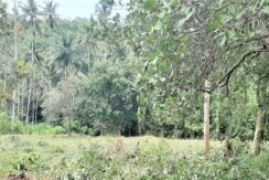 A vendre terrain plat Bang Por - Koh Samui