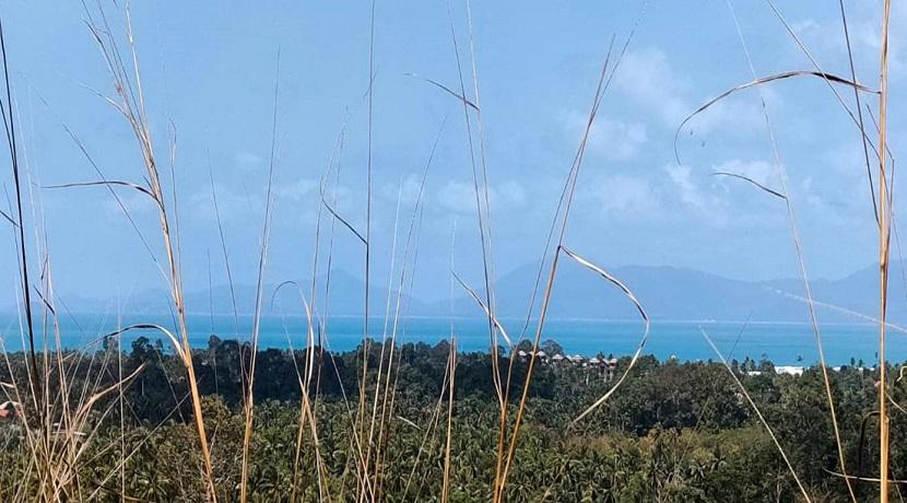 Terrain vue mer à Maenam Koh Samui – à vendre – 1312 m²
