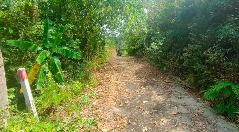 Terrain vue mer à Maenam Koh Samui à vendre 06